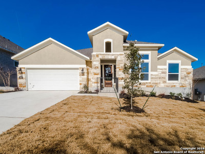 Boerne Single Family Home For Sale: 8513 Dana Elms