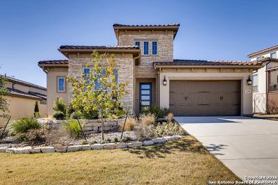 San Antonio Single Family Home For Sale: 22835 Estacado