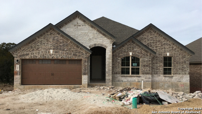 New Braunfels Single Family Home For Sale: 249 Sigel Ave