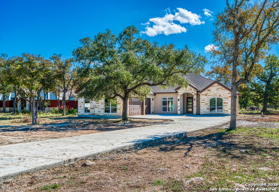Spring Branch Single Family Home New: 1026 Pegasus Dr