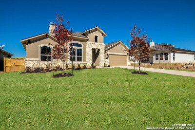 New Braunfels Single Family Home For Sale: 2446 Kookaburra Dr