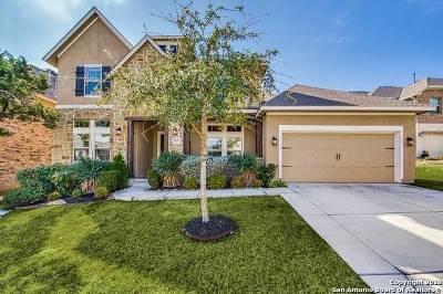 San Antonio Single Family Home For Sale: 24223 Artisan Gate
