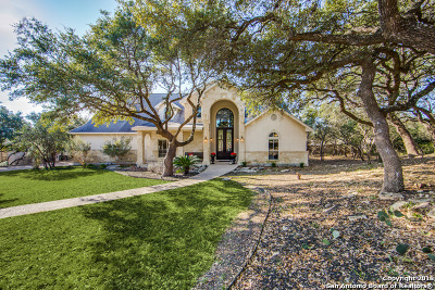 Boerne Single Family Home For Sale: 28829 Riva Ridge Dr
