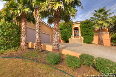 Helotes Single Family Home New: 315 Pueblo Pintado