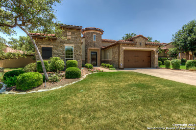 Bexar County Single Family Home New: 22606 Viajes