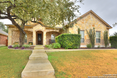 Bexar County Single Family Home For Sale: 11354 Ivy Cadence