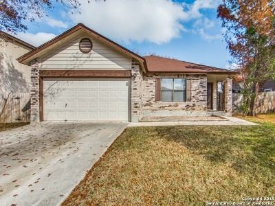 Converse Single Family Home For Sale: 816 Meadow Peak