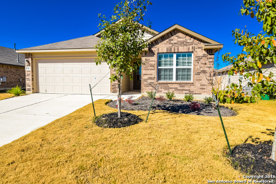 San Antonio Single Family Home New: 8711 Fischer Falls