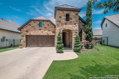 New Braunfels Single Family Home For Sale: 907 Gruene Spring