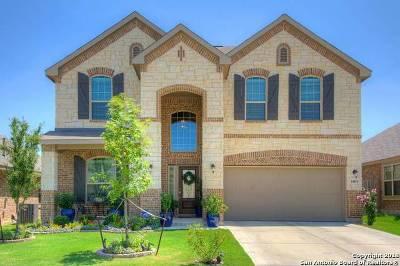 San Antonio Single Family Home Back on Market: 14414 Palomino Pl