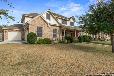 Guadalupe County Single Family Home New: 3355 Harvest Hill Blvd