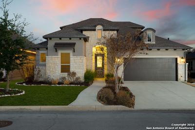 San Antonio Single Family Home New: 4662 Amorosa Way