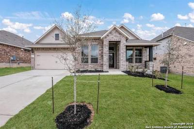 Helotes Single Family Home For Sale: 17731 Handies Peak