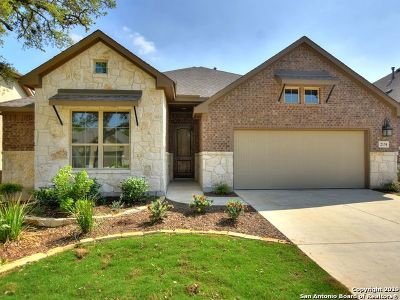 Bexar County Single Family Home For Sale: 2134 Silent Fox