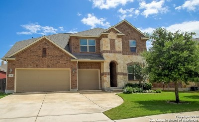 Boerne Single Family Home New: 27042 Sable Run