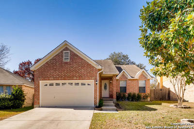 Bexar County Single Family Home New: 1318 Canyon Parke Dr