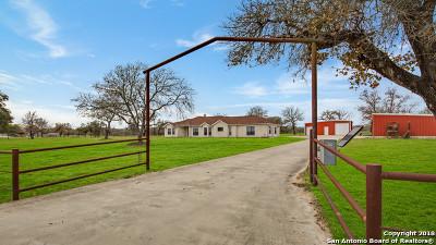 Floresville TX Single Family Home Active Option: $385,000
