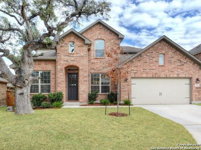 Boerne TX Single Family Home New: $394,900