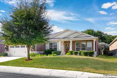 Bexar County Single Family Home New: 4015 Apache Ranch