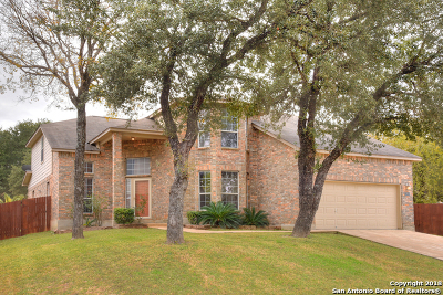 Bexar County Single Family Home New: 12646 Point Canyon