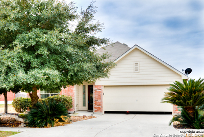 New Braunfels Single Family Home New: 323 Primrose Way