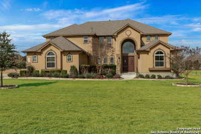 New Braunfels TX Single Family Home New: $620,000