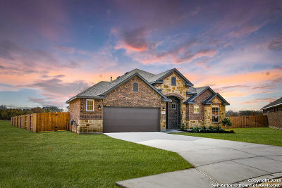 New Braunfels TX Single Family Home New: $369,990