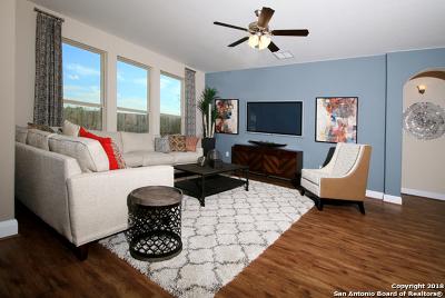 San Antonio Single Family Home New: 6243 Carriage Cape