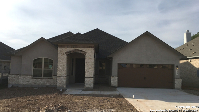 New Braunfels TX Single Family Home New: $392,984