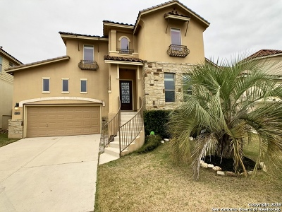 San Antonio Single Family Home New: 18126 Camino Del Mar