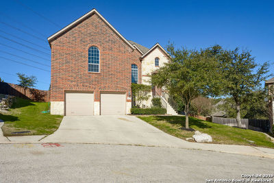 Helotes Single Family Home For Sale: 8743 Roswell Ridge
