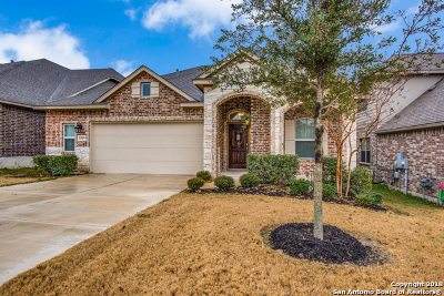 Alamo Ranch Single Family Home New: 5319 Azalea Fern