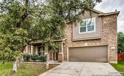 Bexar County Single Family Home New: 4527 Berry Grove