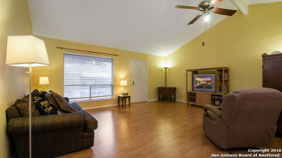 San Antonio Condo/Townhouse New: 9503 Powhatan Dr #404