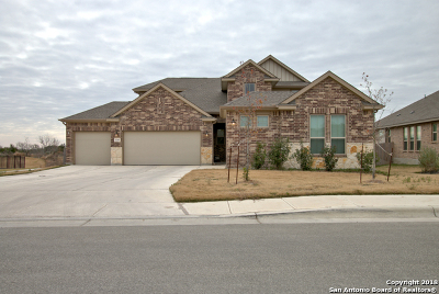 New Braunfels TX Single Family Home New: $389,500