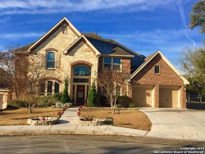 San Antonio Single Family Home New: 25619 Stormy Creek