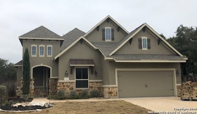 San Antonio TX Single Family Home New: $469,990