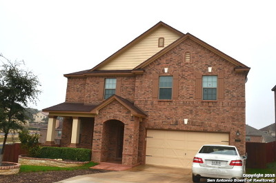 Bexar County Single Family Home New: 21207 Cinch Run