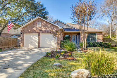 San Antonio TX Single Family Home New: $365,000