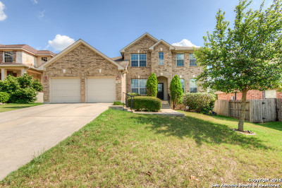 Bexar County Single Family Home New: 919 Mesa Loop