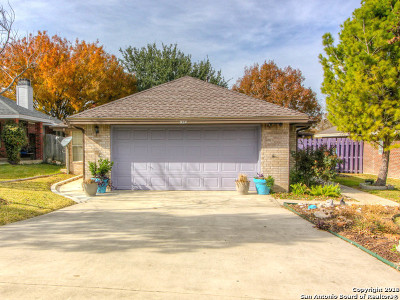 New Braunfels Single Family Home Active Option: 924 Northpark Ridge