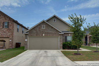 San Antonio TX Single Family Home New: $209,900