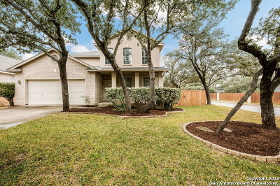 Bexar County Single Family Home New: 13003 Legend Cave Dr