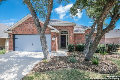 Bexar County Single Family Home New: 5555 Southern Oaks