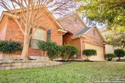 San Antonio Single Family Home New: 11642 Basket Xing