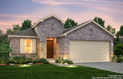 San Antonio Single Family Home New: 12010 Silver Valley