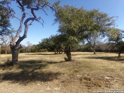 San Antonio Residential Lots & Land New: 27710 Wild Bloom