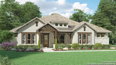New Braunfels Single Family Home For Sale: 2542 Lermann
