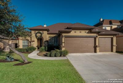 San Antonio TX Single Family Home New: $549,000