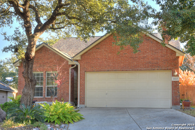 Universal City Single Family Home New: 8807 Point View Dr